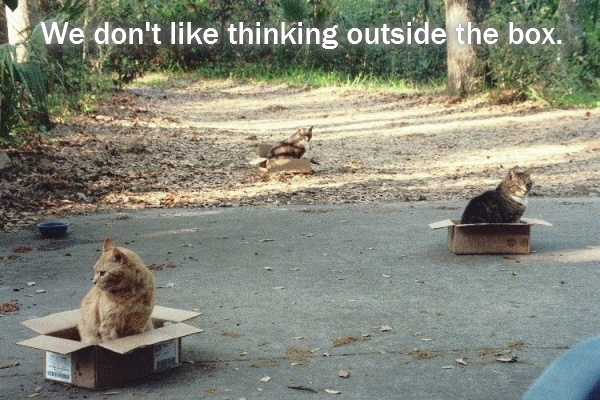 We don't like thinking outside the box.